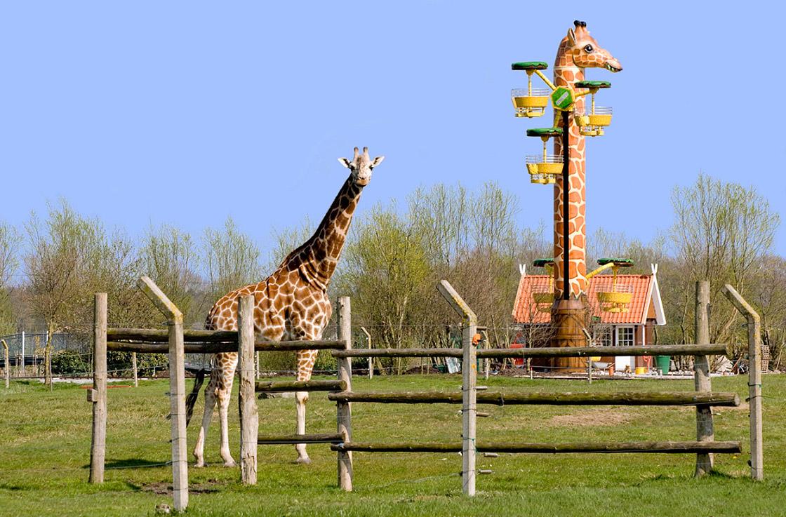 Giraffenturm Jaderpark Metallbau Emmeln